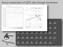 Aracari: exploration of eQTL data through visualization