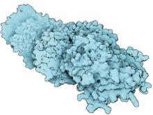 Importance Driven Visualization of Molecular Surfaces
